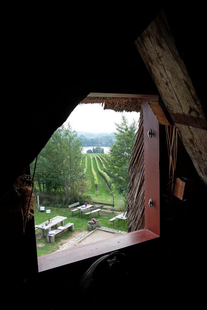 Blick aus der Grebiner Mühle von 1854